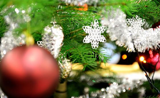 Зимний праздник 2016 года. Очень много фотографий. Пожалуйста, ждите полной загрузки.